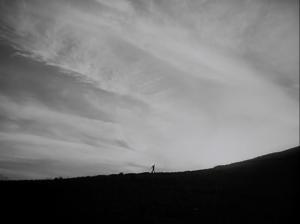 Homme - Horizon